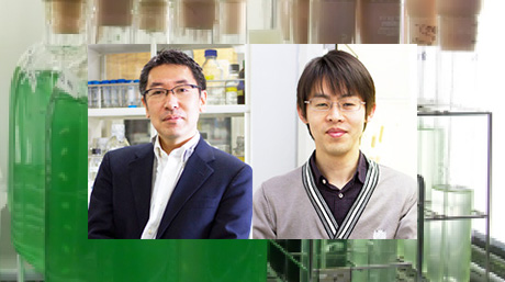 Labs spotlight #3 - Tanaka and Imamura Laboratory -