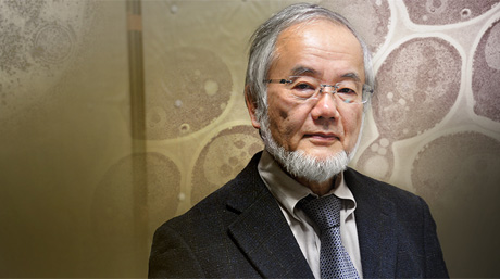 Yoshinori Ohsumi, 2016 Nobel laureate in Physiology or Medicine