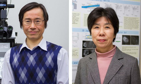 Professor Makio Tokunaga and Associate Professor Kumiko Sogawa