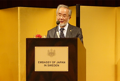 Ohsumi's speech after his Nobel Lecture
