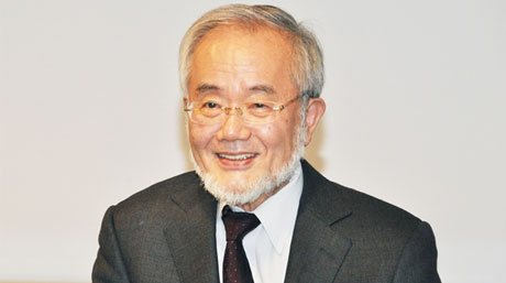 Honorary Professor Yoshinori Ohsumi receives 2016 Order of Culture