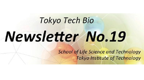 News Letter No.19