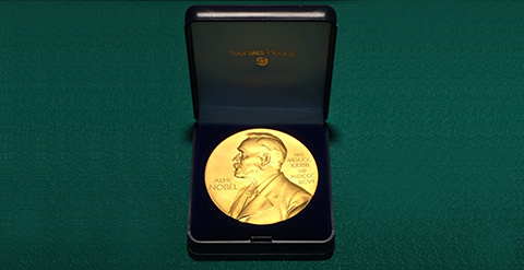 Nobel Prize medal replica (®© The Nobel Foundation)