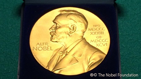 Nobel Prize medal replica at Suzukakedai Campus