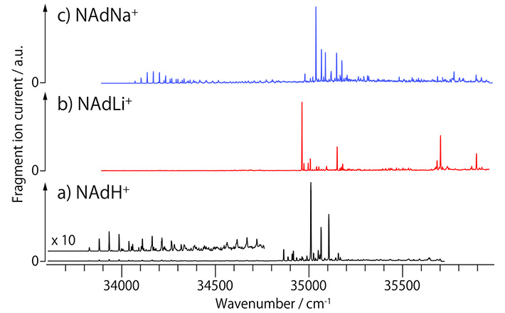 UVPD spectra of protonated and alkali metal complexes of noradrenaline