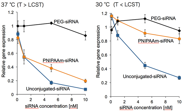 Gene silencing efficacies of polymer-conjugated siRNA systems for cultured cells at two distinct temperatures