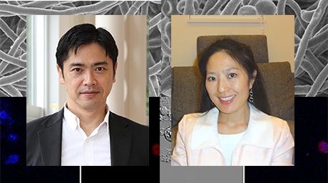 Labs spotlight #44 - Kajiwara and Orihara Laboratory -