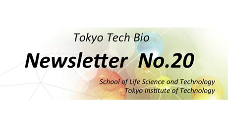 News Letter No.20