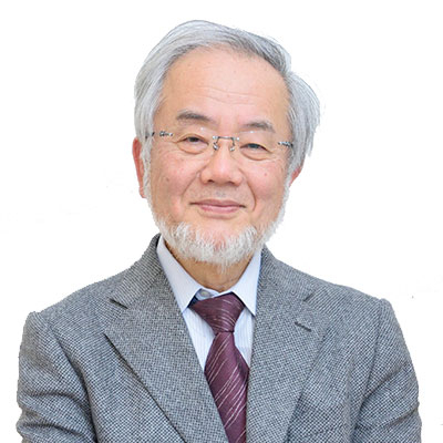 Comments from Honorary Professor Ohsumi