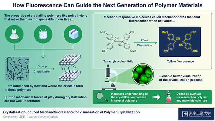How Fluorescence Can Guide the Next Generation of Polymer Materials