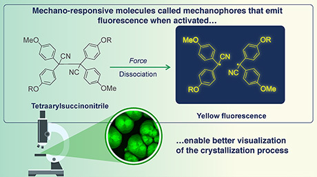 Mechanophores: Making Polymer Crystallization Processes Crystal Clear