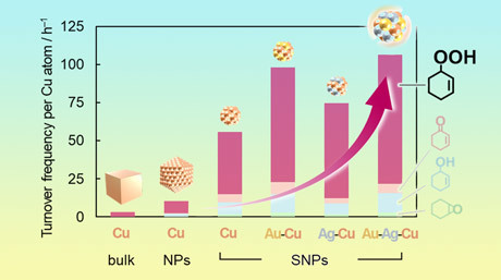 Going Small for Big Solutions: Sub-Nanoparticle Catalysts Made from Coinage Elements as Effective Catalysts