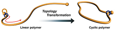 Topology Transformation