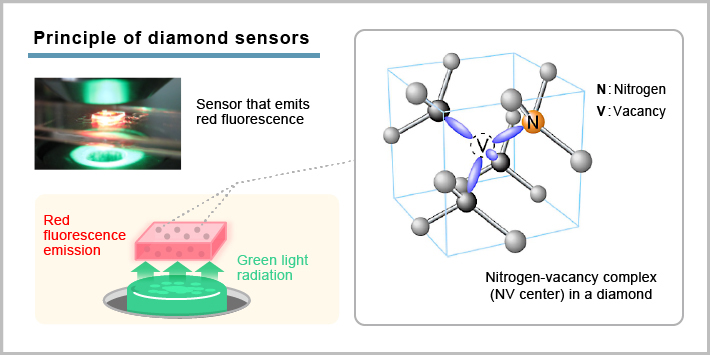 Principle of diamond sensors
