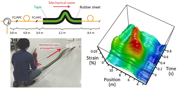 Tracking of a propagating mechanical wave. Schematic structure and photograph of the fiber under test, and the measured temporal variation of the strain distribution.
