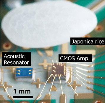 Microwave oscillator with a piezoelectric film resonator