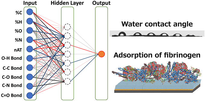 Figure 1. Artificial neural network model used in this work