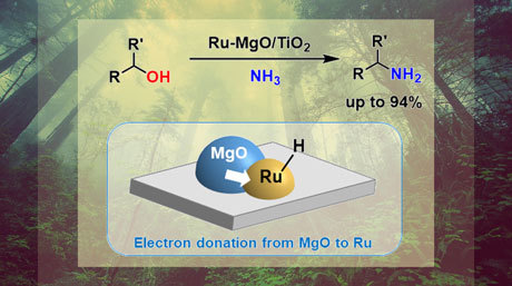 An enhanced ruthenium-based catalyst for primary amine synthesis