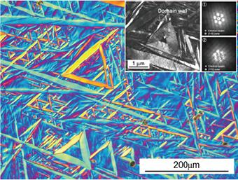 Ti-Nb-Al合金のマルテンサイト相が呈するドメイン構造