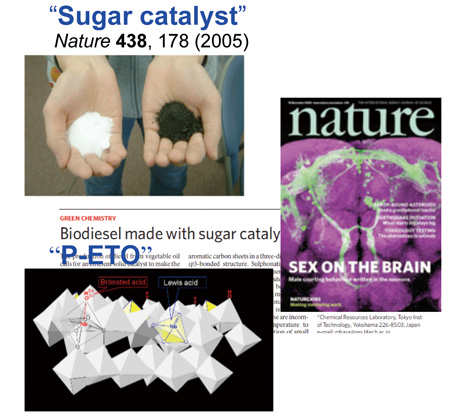Sugar Catalyst P-ETO
